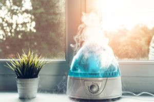 use a humidifier in cold winter months